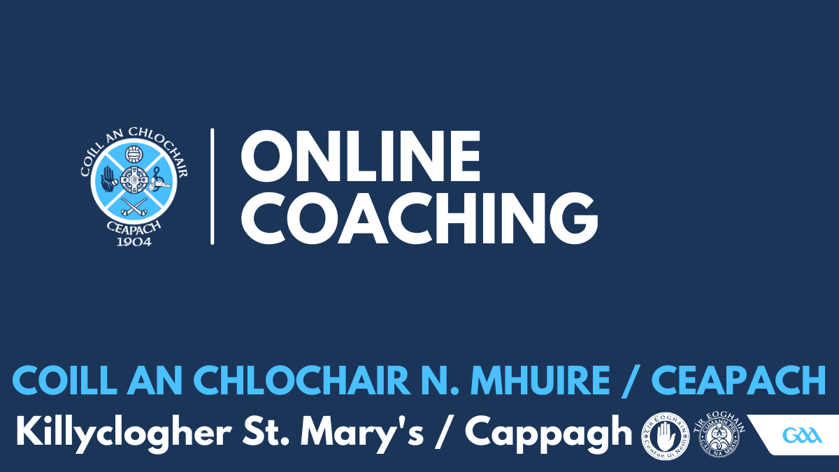 Online Youth Coaching