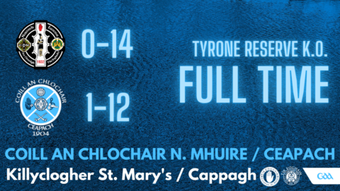 Reserves Reach County Final